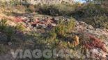 CORSICA 4X4 WEEK-END 3 GIORNICAP CORSE E DESERTO DES AGRIATES - Foto 3 di 115