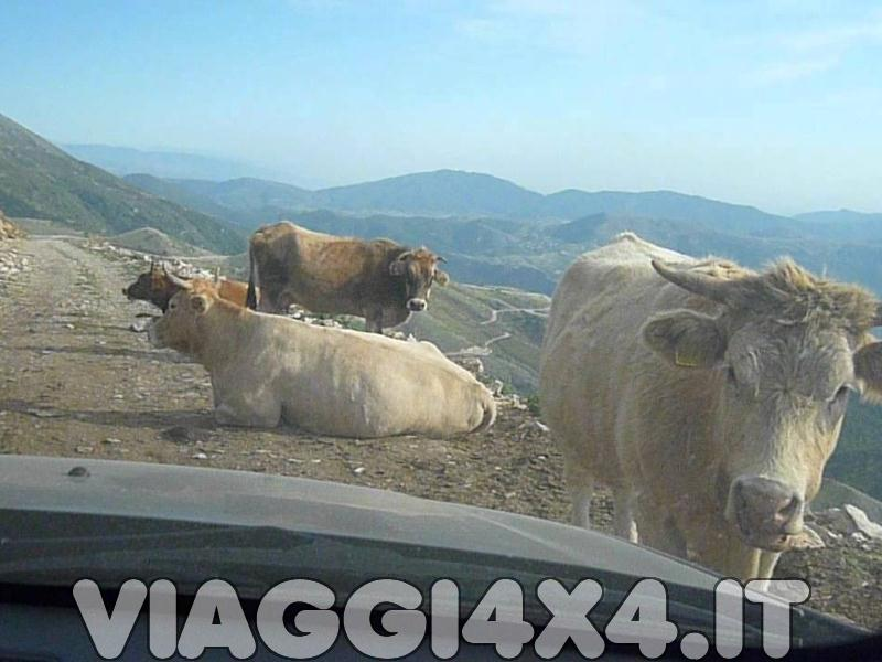 FACTORY RIFUGIO CHRISTAKIS, MONTE OLIMPO, GRECIA