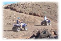 Guidare un Quad / ATV