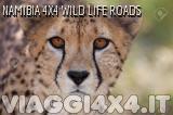 VIAGGI 4X4 - NAMIBIA 4X4 WILDLIFE SAFARI